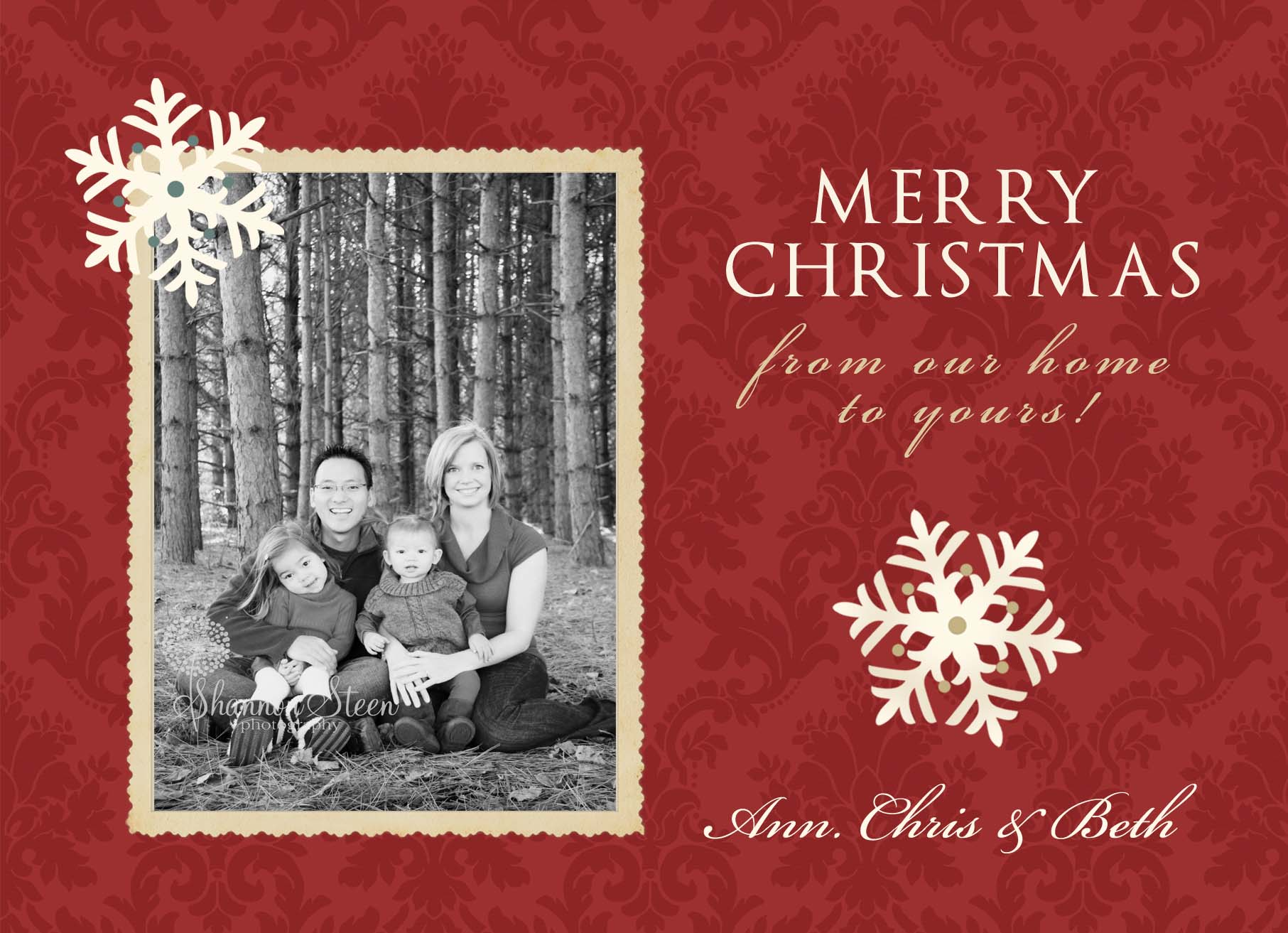 Christmas cards are here shannon steen photography advertisements m4hsunfo