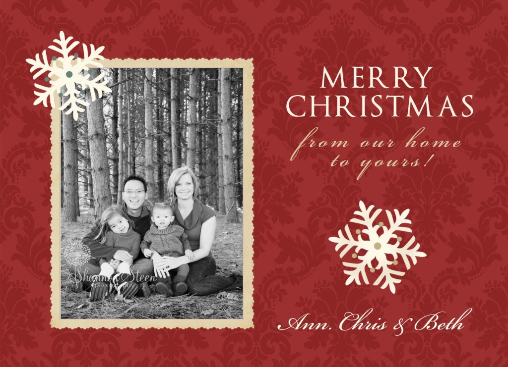 Christmas cards shannon steen photography advertisements m4hsunfo